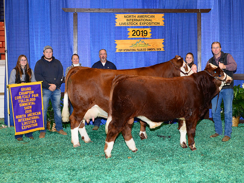 Freedom Run Farm Winners of the 2019 - Grand Champion Cow/Calf at the North American International Livestock Exposition.